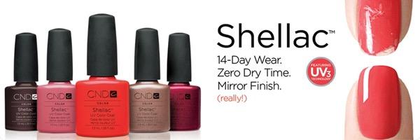 shellac gel manicure nail salon dover de